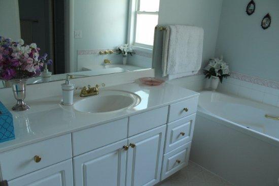 Tuxedo House B&B: Large vanity sink in shared bathroom