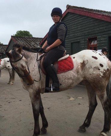 Scottish Equestrian Hotel Photo