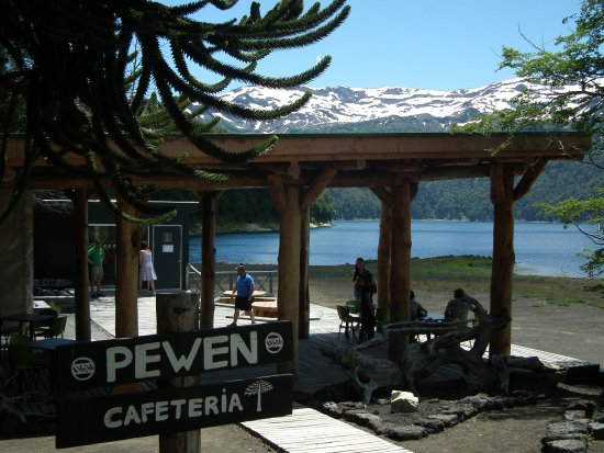 Melipeuco, Chile: Café am Lago Conguillo