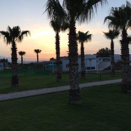 Hotel Delfina Beach: photo1.jpg
