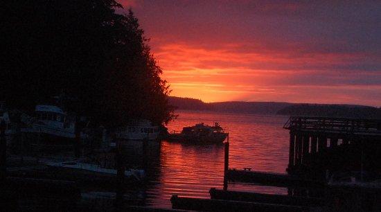 Telegraph Cove Resort: View of sunset from resort