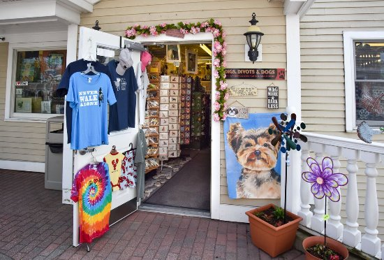 Kennebunkport, ME: Welcome to Dog Paradise