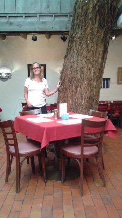 Image Result For La Placita Dining Rooms Albuquerque West Old Town