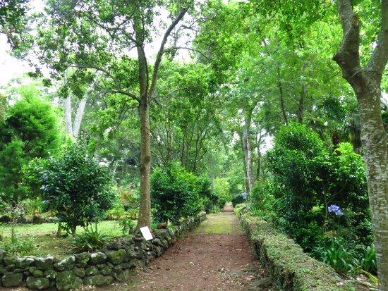 Solar do Conde: Garten bzw. Parkbereich