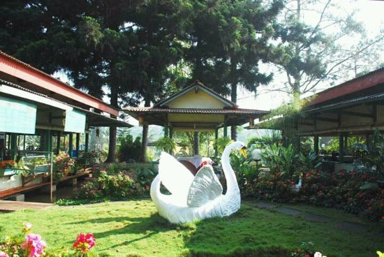 Hotel Rafflesia Lodge Reviews Sukabumi Indonesia Tripadvisor