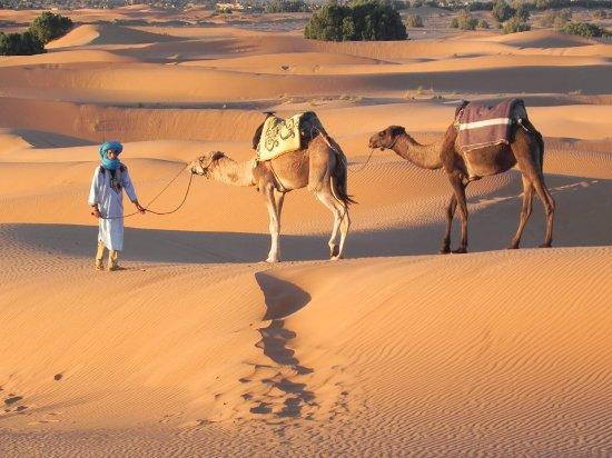 Marruecos Tours Desierto