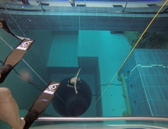 Free diving Y-40 - モンテグロ...