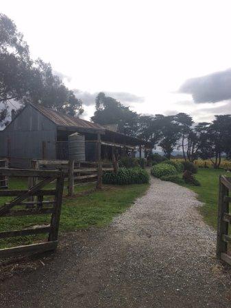 Yering Farm