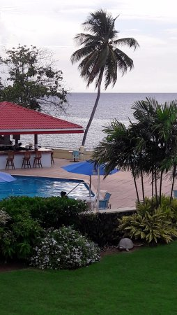 Crown Point Beach Hotel: This is one of the views from my room showing the grounds, bar and pool.