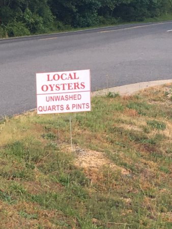 Kilmarnock, VA: Advertised oysters, but out of oysters!!!  Not notified of such, until replacement meal served.