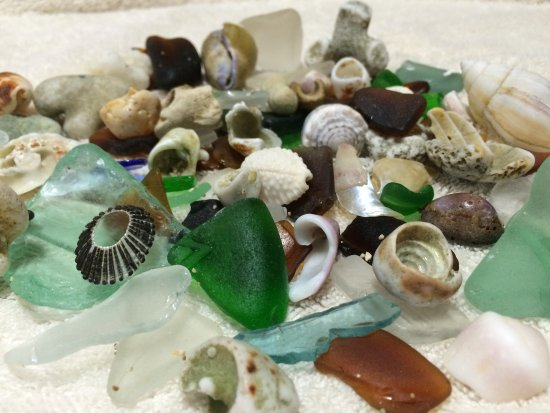 The Lodge at Keneohe Bay : Our favorite keepsakes, beach glass and seashells.