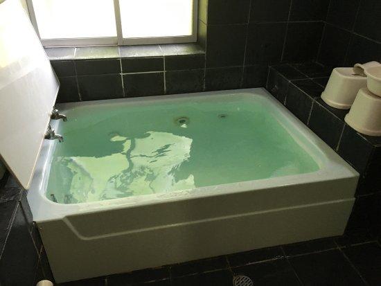 十和田湖畔溫泉