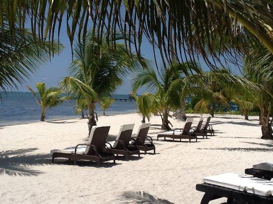 Las Terrazas Resort Image