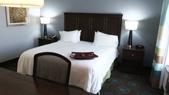 Hampton Inn & Suites Shreveport/Bossier City at Airline Drive: King Bed Guest Room
