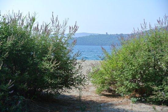 Camping Dias Beach