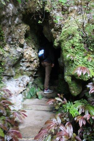 Otorohanga, Νέα Ζηλανδία: The cave entrance and exit