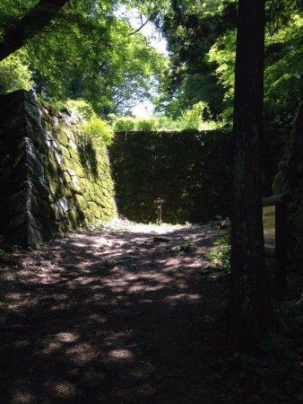 Takatori-cho, Ιαπωνία: 緑が多くて散歩していて気持ちいい