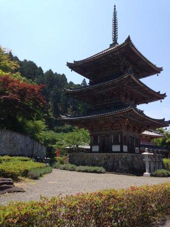 Takatori-cho, Jepang: これが、ベストショットかな。