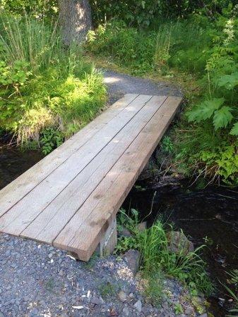 Alaska Creekside Cabins: Wooden bridge across creek mentioned in review