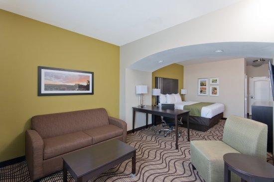 Artesia, Nowy Meksyk: King Executive Suite