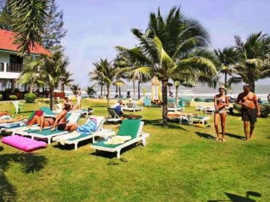 Dolphin Bay Resort: Sunbeds