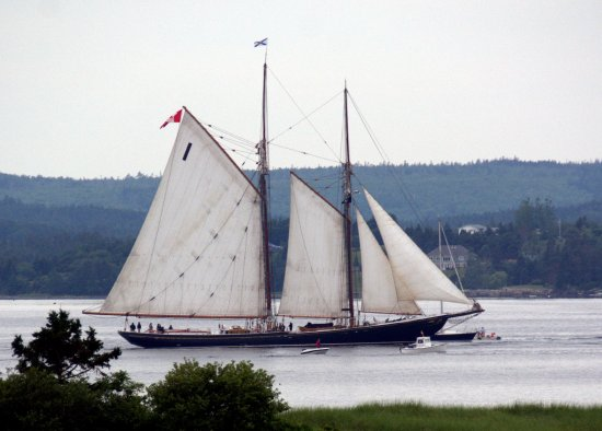 Bluenose ll, on tour of the Lunenburg Harbour. June 2016.