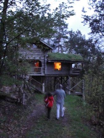 Saint-Martial de Gimel, Frankrijk: la cabane dans les bois