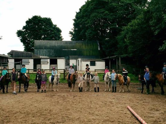 Crymych, UK: Own a Pony Day at Crosswell Riding Stables