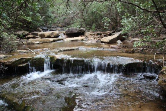Virgin Falls State Natural Area