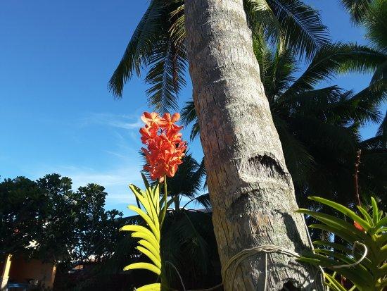 Hindang, Filippinene: Breathtaking!