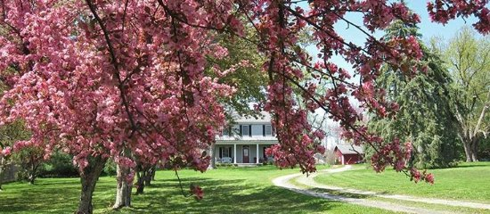 Warren County, OH: The Sinclair House Bed and Breakfast - Waynesville, OH