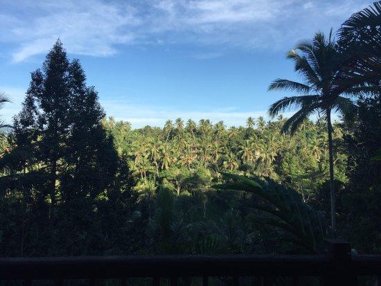 Villa Sarna Ubud : photo2.jpg