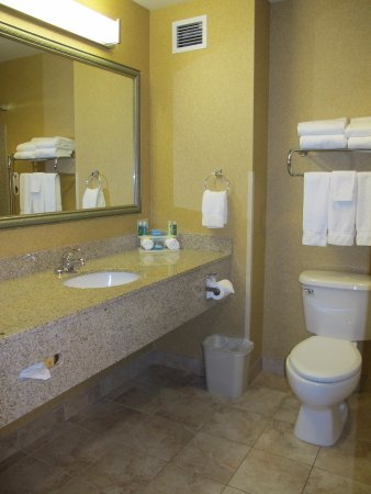 Holiday Inn Express Hotel & Suites Sandpoint North: Spacious counter