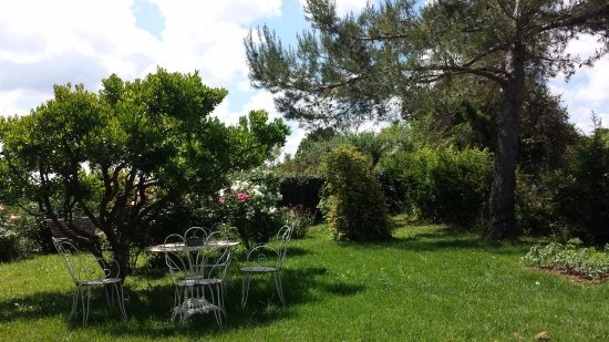Dions, France : Garden