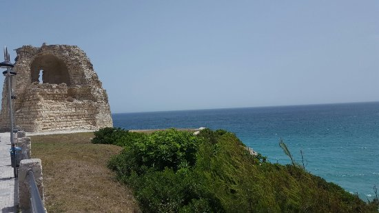 Torre Dell'Orso, Italy: 20160617_113959_large.jpg