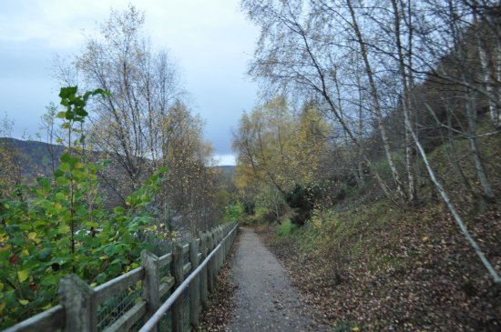 Loch Ness: The trail