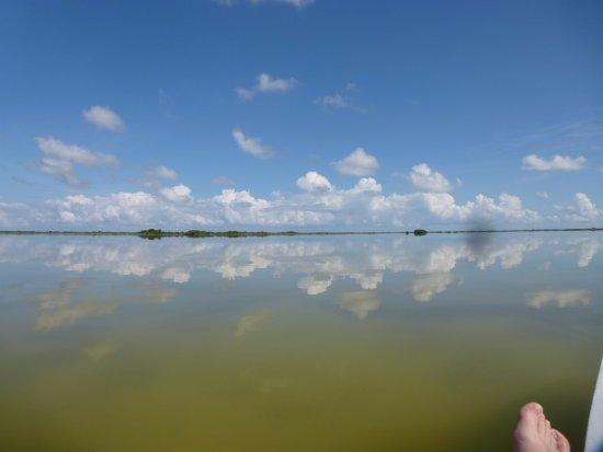 Sarteneja, Belice: Lagoon