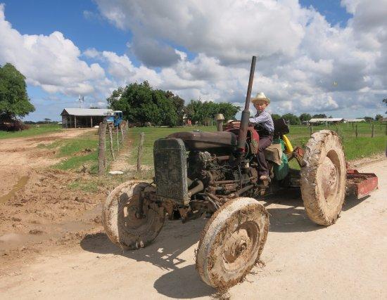 Sarteneja, Belize: Mennonites