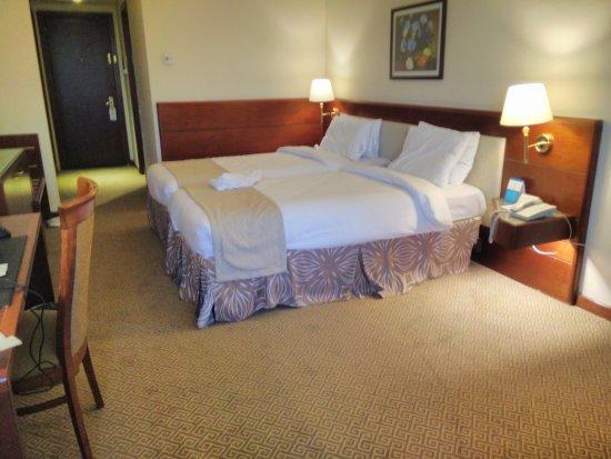 Photo of Sasai Hotel Otofuke-cho