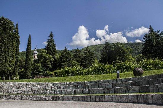 Bortolomiol - Parco della Filandetta