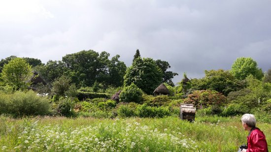 Minstead, UK: We spent several hours gently walking around the lovely gardens at Furzey.