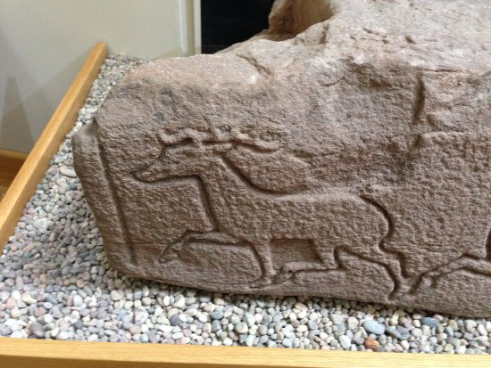St Vigeans Stones and Museum: Stag