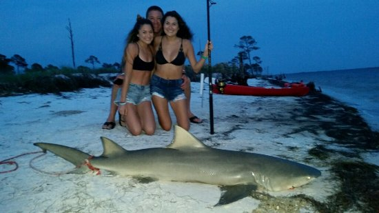 Off The Beach Shark Fishing Day Trips 6 Bull Panama City