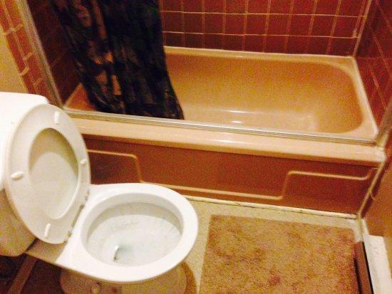 Walkerton, Canada: private wash room