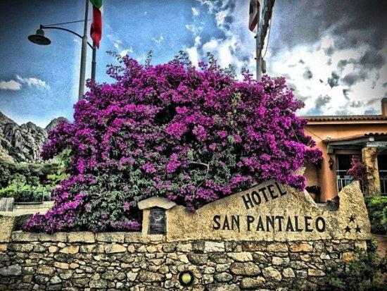 Hotel San Pantaleo: ingresso hotel