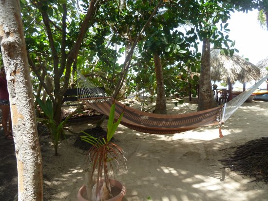 Little Corn Beach and Bungalow Photo