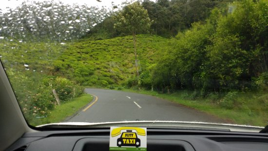 munnar from the car. - picture of just taxi holidays, kochi (cochin