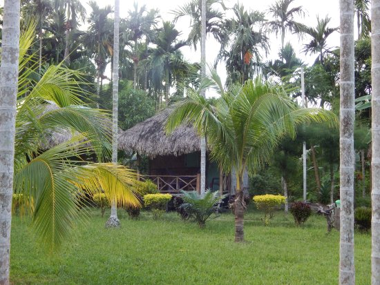 Green Imperial Hotel: Eco huts
