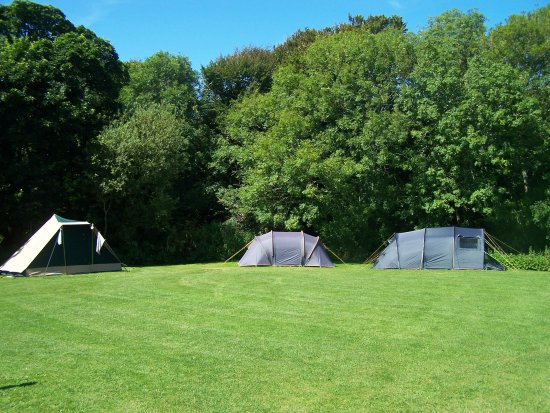 Franchis Holidays: Tents only field