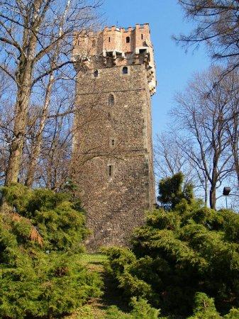 Piastowska Tower